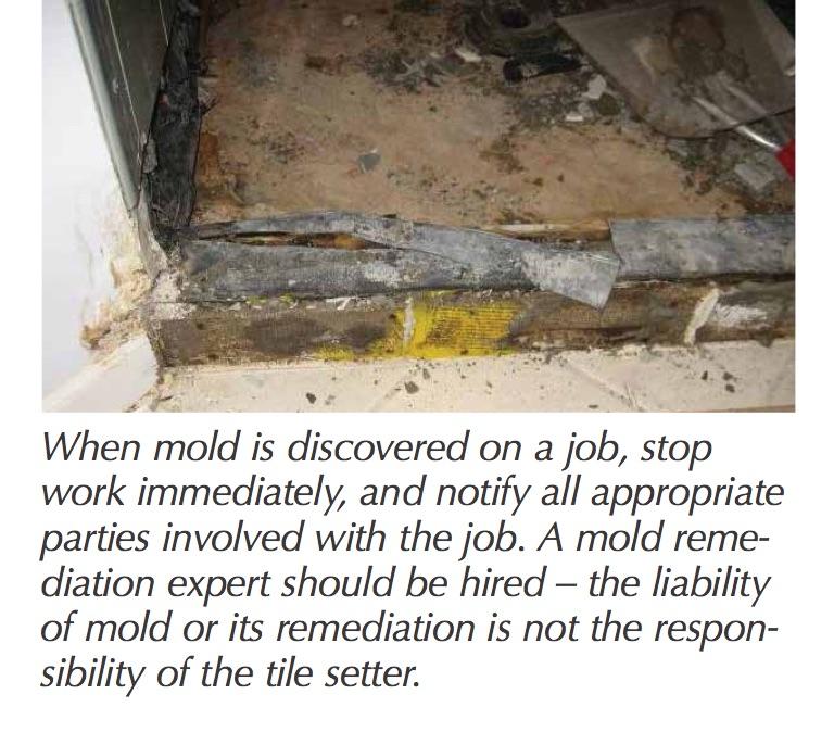 tt-mold1